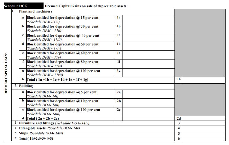 ITR-3 Form Schedule DCG